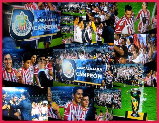 Chivas Copa 2015