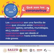 Coronavirus Postal 1